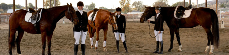 Photograph of dressage students with horses