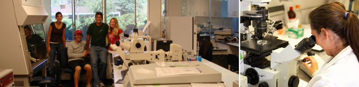 Photograph of students in lab and student looking into microscope