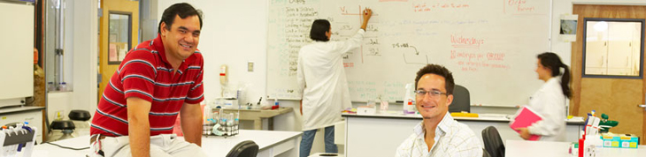 Photograph of two faculty with students working on white board.