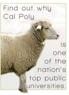 Find out why Cal Poly is one of the nation's top public universities