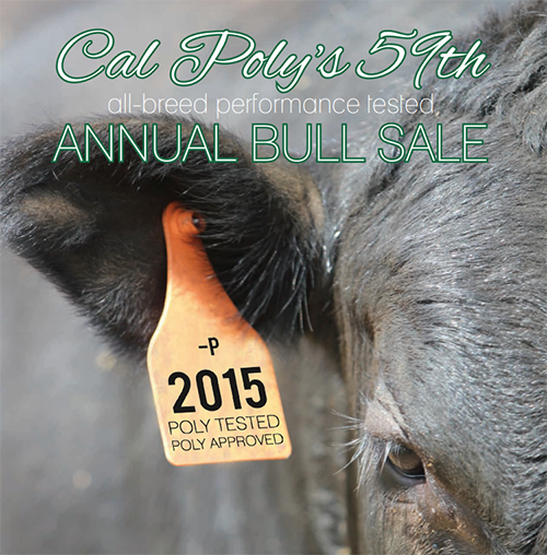 Cal Poly 59th Annual Bull Test Sale Catalog