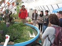 aqua farm demonstration