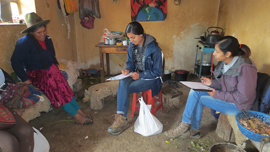 Camacho and Chavez conducting interviews with a householder in Peru