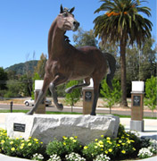 Statue of Cal Poly's mustang