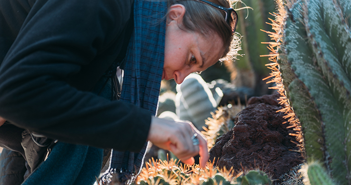 Up close photo of woman inspecting the needles of a round cactus
