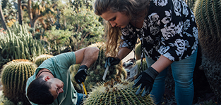 Photo of one woman and one man measuring a cactus.