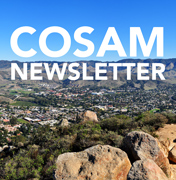 College of Science and Mathematics Newsletter
