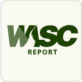 Link to WASC report