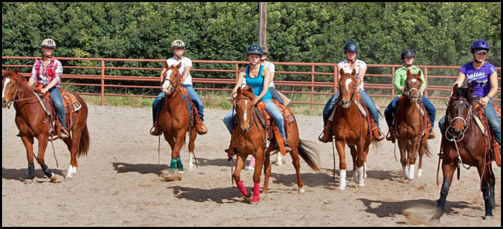Cal Poly Performance Horses