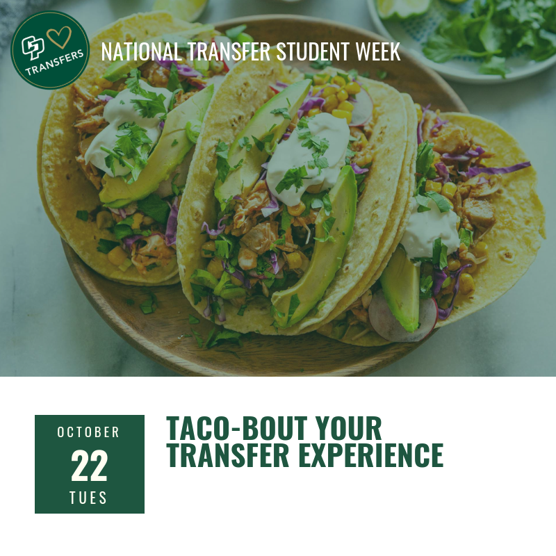 Taco-bout your transfer experience image
