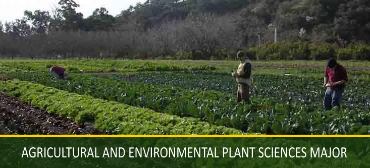 Agricultural and Environmental Plant Sciences Major