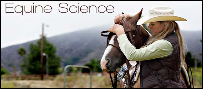what can you do with an equine science degree