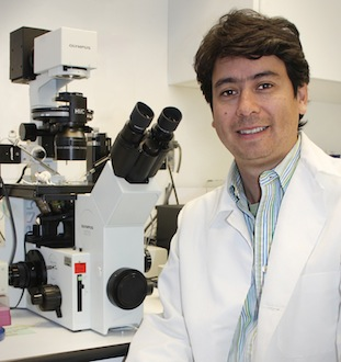 Dr. Campos in the laboratory with a microscope