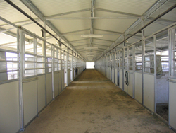Equine Center barn aisle