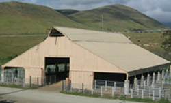 Cal Poly Sheep Center