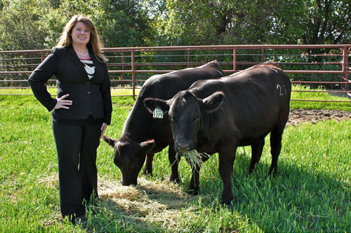 Keela Retallick with two Angus cows
