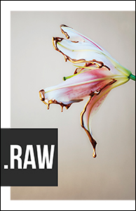 RAW Volume 2 Issue 2 (Winter 2018)