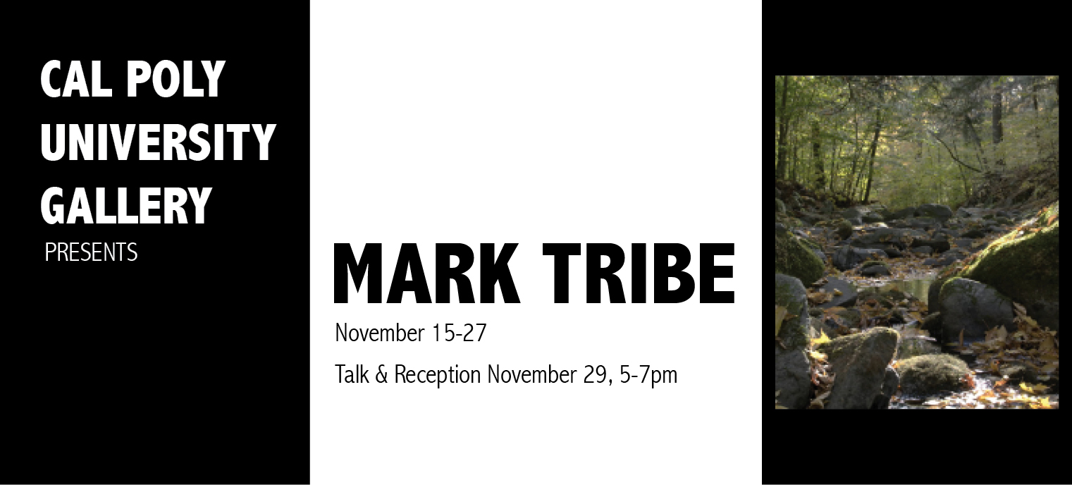 Mark Tribe Exhibit
