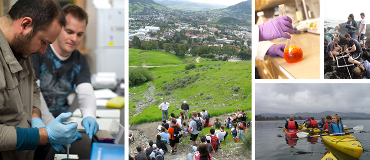 Collage of Biology department activities