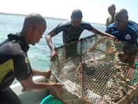 Fishers and Kenya Wildlife Service Senior Warden working together to trap and tag fish