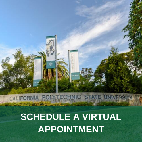 Schedule a Virtual Appointment