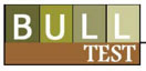 Bull Performance Logo