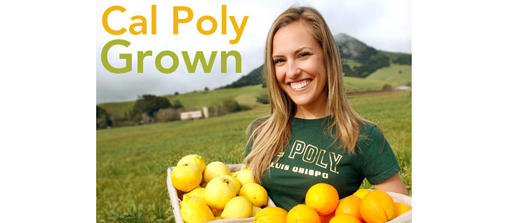 Calpoly grown