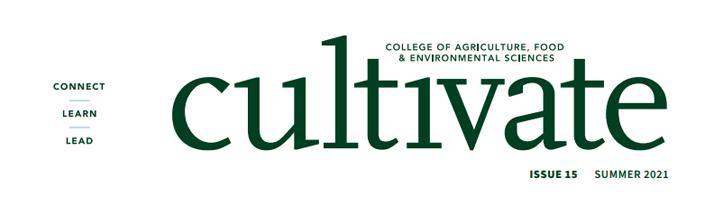 Cultivate Magazine cover title