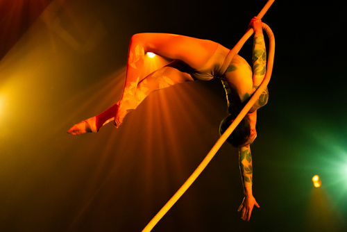 Promotional photo of aerial arts for Orchestra Novo performance.