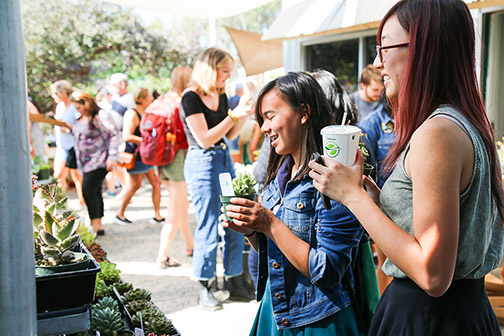 Photo of students and others shopping at a past succulent sale