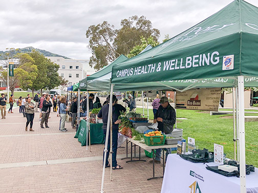 Photo from a farmers market on Mustang Way on campus.