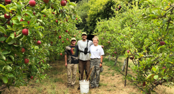 Photo of three people standing in an orchard at Swanton Pacific Ranch