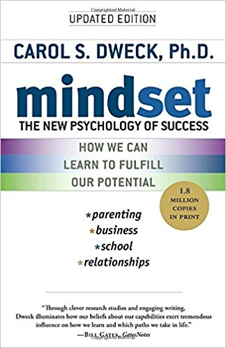 "Photo of the cover of ""mindset"" book"