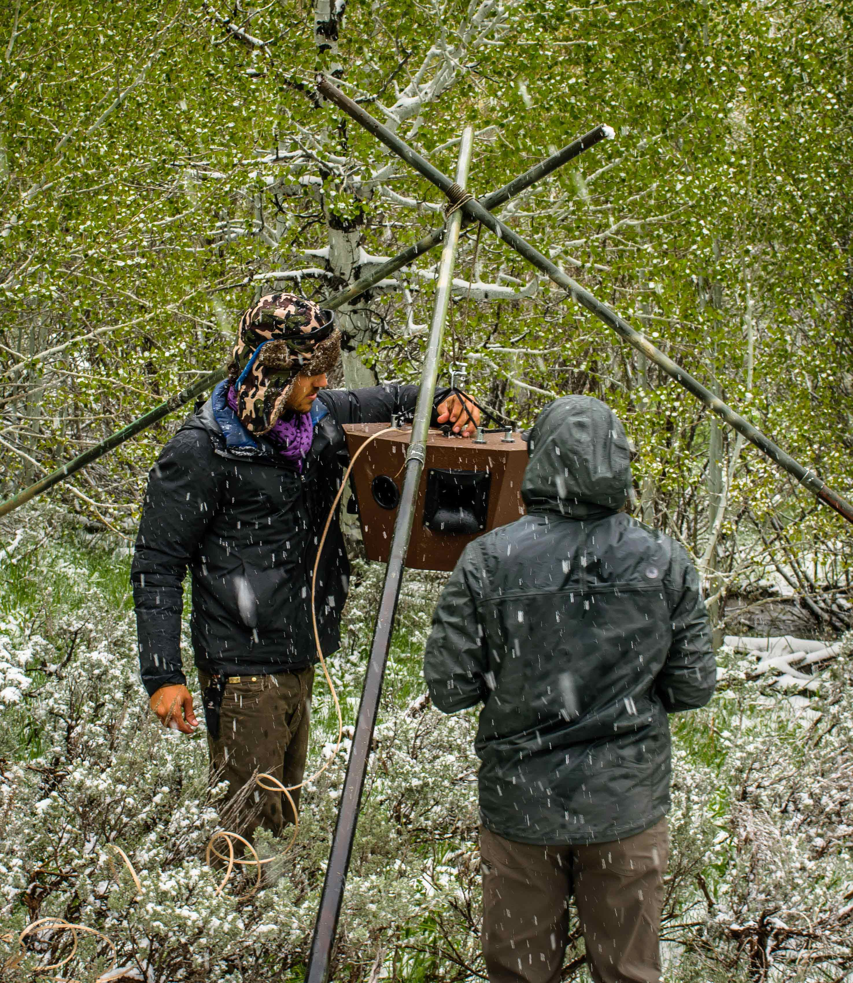 Cuesta College alumnus Dylan Gomes, left, led the research team that deployed speaker arrays early in the spring in Idaho's Pine Mountains to begin playback of whitewater river noise before most birds and bats were using this 5,000- to 7,000-foot elevation area. The study was a collaboration between Cal Poly and Boise State, where Gomes was doing his doctoral research.