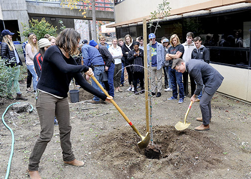 File photo of the 2016 annual Arbor Day planting on campus.