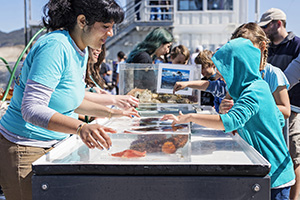 Students explore a touch-tank on pier.