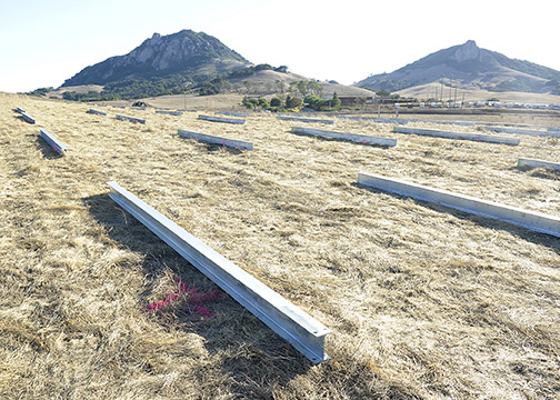An 18.5-acre solar farm is being constructed on Cal Poly grazing lands next to Highway 1.