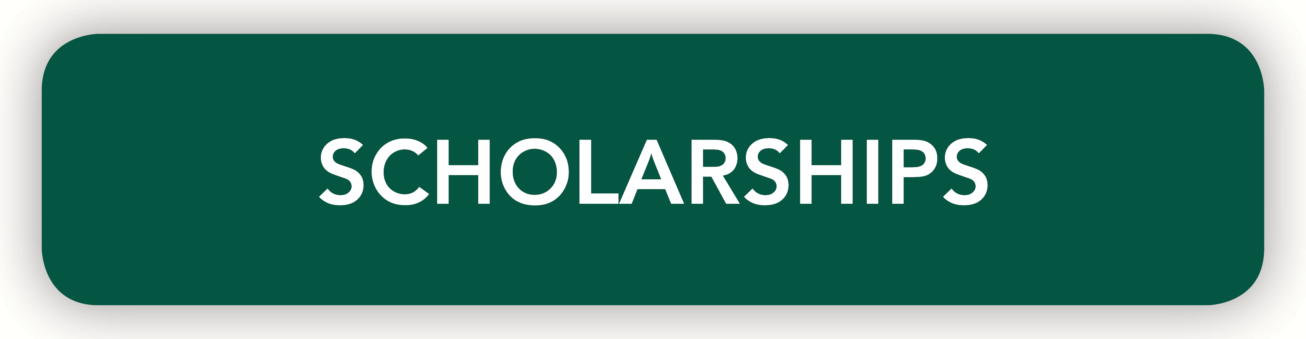 Scholarships Button
