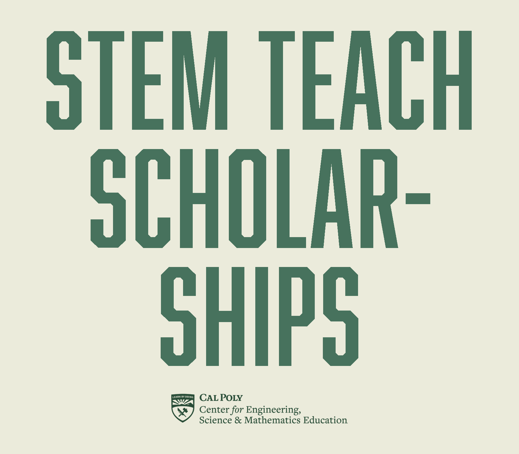STEM Teach Scholarships Logo