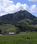 Cal Poly landscape