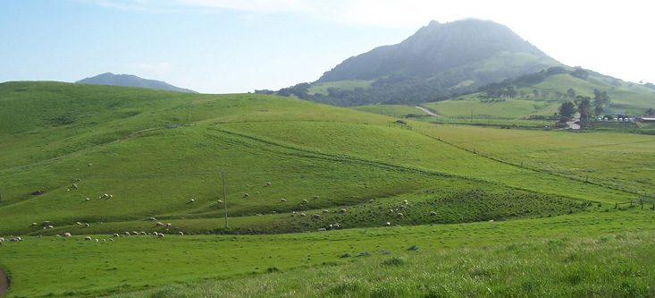 Rolling hillls of Cal Poly San Luis Obispo