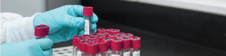 Photo of test vials