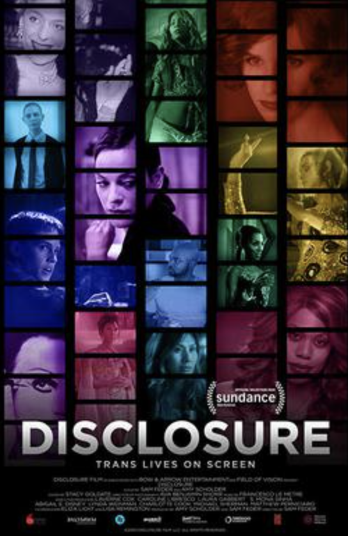 Disclosure film cover