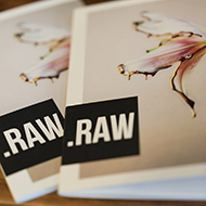 Cal Poly Art and Design RAW