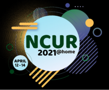 The logo for NCUR