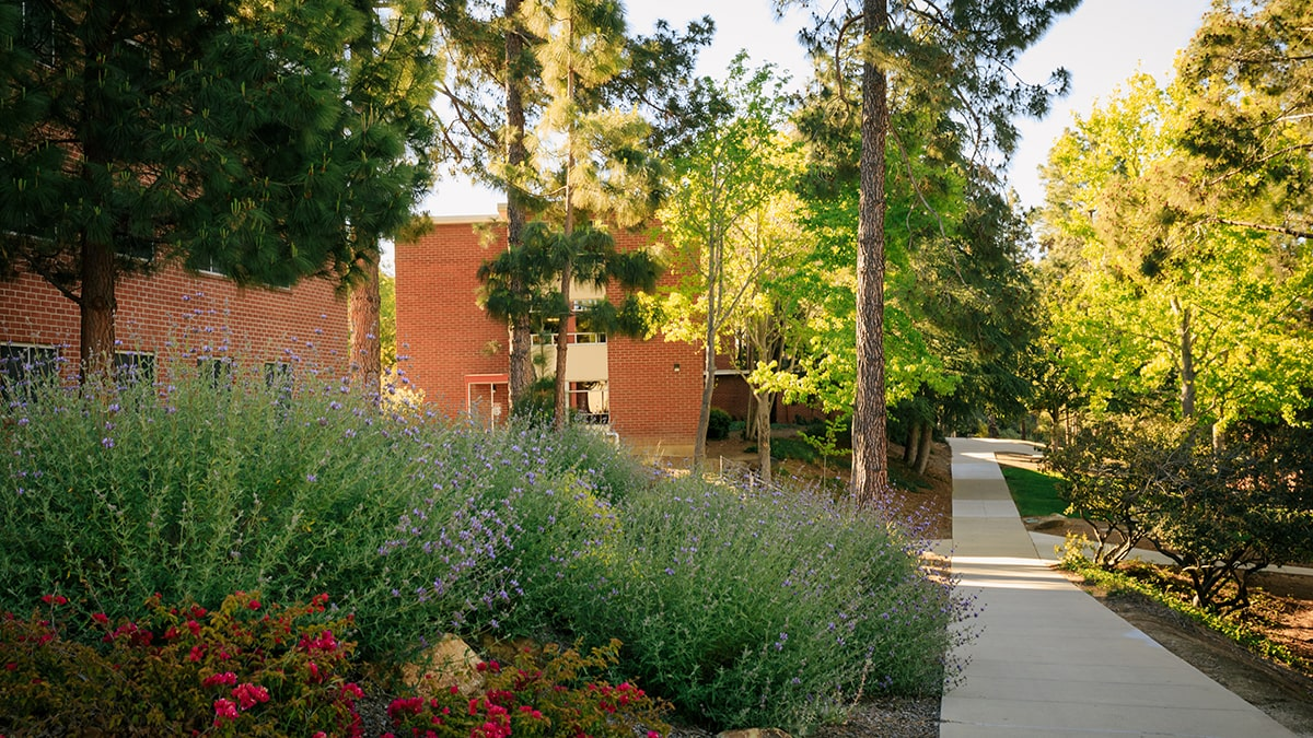 Cal Poly residence halls from the outside.