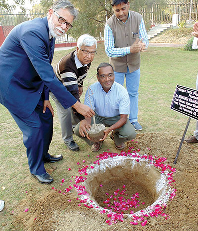 Nishi Rajakaruna (second from right) plants a Platanus orientalis (Old World Sycamore) sapling on the Aligarh Muslim University, India, campus.