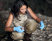 Student collects cultures from stream bed