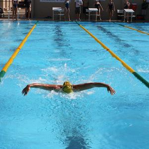 A swimmer swimming down a pool lane.