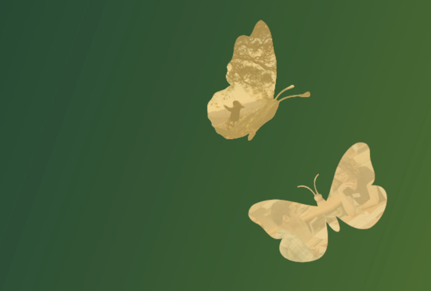 Two gold butterflies on a green background.